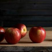 SweeTango apples are a cross between Honeycrisp and Zester varieties. Photo courtesy of SweeTango.