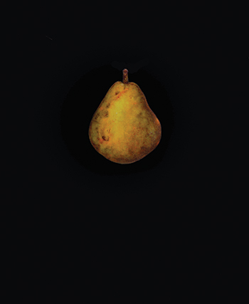 closingthought_Pear
